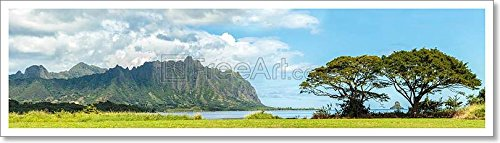 The Koolau Mountains Viewed Across Kaneohe Bay On Windward Oahu, Hawaii Paper Print Wall Art (8in. x 29in.)
