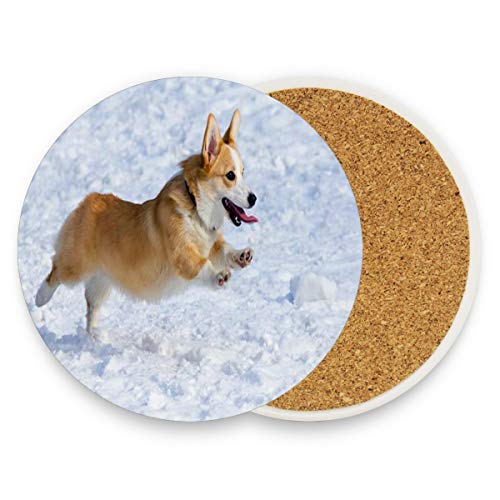 Funny Dog Breed Welsh Corgi Pembroke Coasters, Prevent