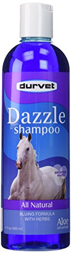 Aloe 8 Ounce Bar - Aloe Advantage Dazzle Color Enhancing Shampoo, 17-Ounce