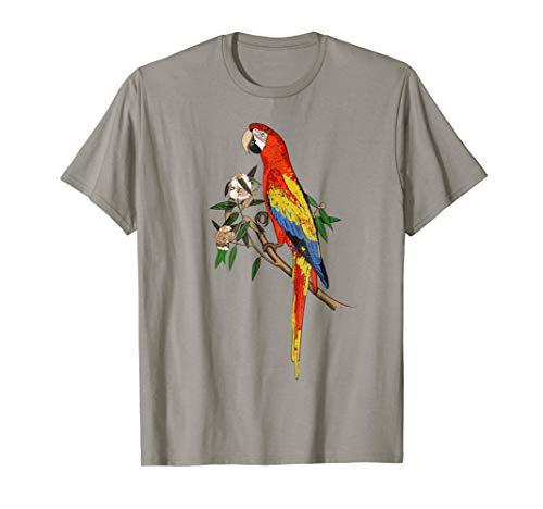 Pretty Parrot Fun Colorful Tropical Jungle Bird Pajama Shirt ()