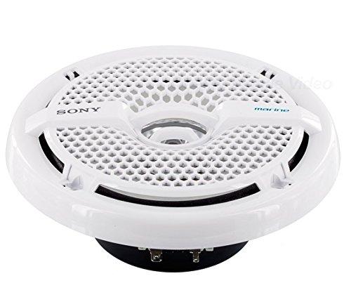 Sony XSMP1621 6 1/2-Inch coaxial 2-way Marine Speaker by Sony (Image #2)