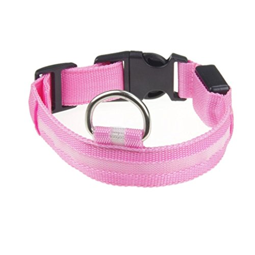 Hot LED Dog Collar! AMA(TM) USB Rechargeable LED Glowing Flashing Nylon Dog Collar Fashion Light up Night Safety Collar for Small Medium Large Dogs (S, Pink)