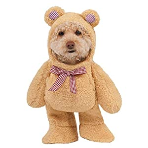 Rubie's Costume Company Walking Teddy Bear Pet Suit