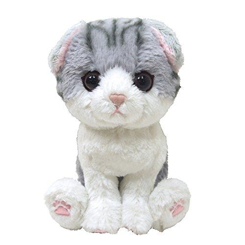 Sun Lemon Kitten Cat Plush Doll Gray Scottish Fold - Scottish Cat