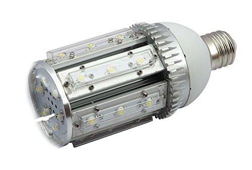 Cholloled - Lámpara de leds para alumbrado público 54 leds 54w: Amazon.es: Iluminación