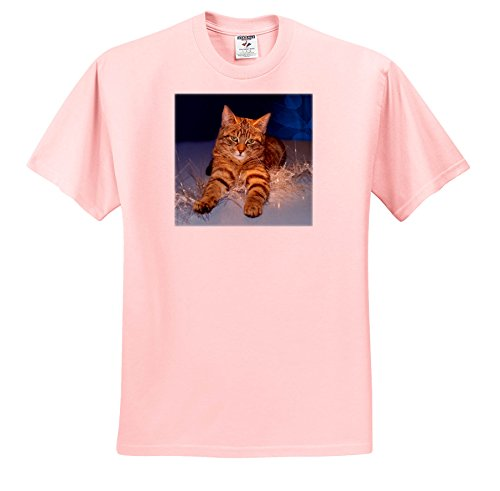 Sandy Mertens Christmas Animals - Striped Cat Laying On Christmas Icicle String Lights - T-Shirts - Light Pink Infant Lap-Shoulder Tee (12M) (Lite Icicle)