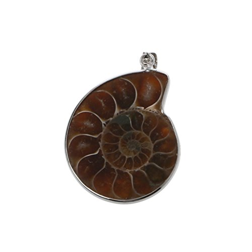 Lovhop Stylish Necklace Natural Stone Ammonite Fossils Seashell Snail Pendants Loose Gemstone Beads DIY for Women Girls Mom - Fossil Pendant Bead Ammonite