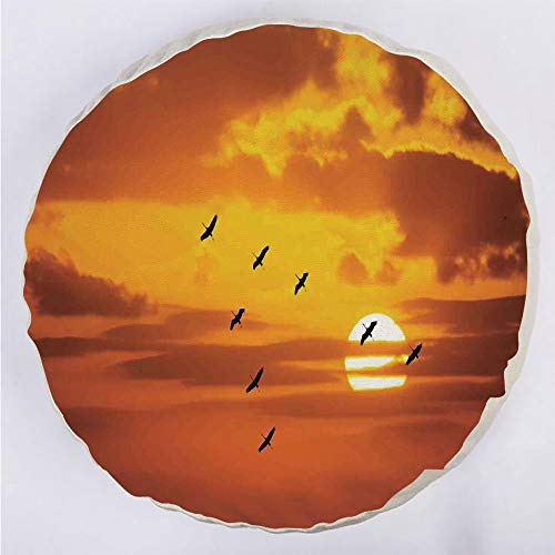 """YOUWENll Round Decorative Throw Pillow Floor Meditation Cushion Seating/V Shaped Formation Flying in Cloudy Sky with a Shining Sun at Sunset Cloudscape Print/for Home Decoration 17""""x17"""" Orange"""