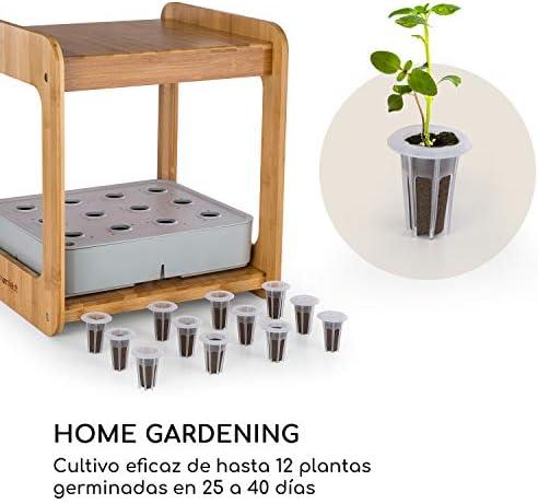 Blumfeldt Urban Bamboo Jardín hidropónico - Huerto, Sistema para ...