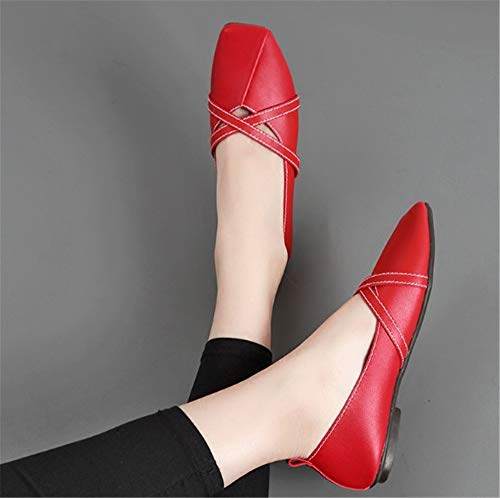 ladies shallow shoes shoes work flat mouth comfortable fashion shoes shoes autumn casual single EU and FLYRCX Spring 38 AqCnp