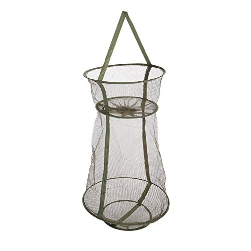 PiscatorZone Collapsible Fishing Cage/Fishing Net/Fishing Basket for Trapping, Storing Small Fishes/Shrimps/Crawfishes/Crabs/Lobsters-Protective and Durable Fishing Tools (Lobster Basket)