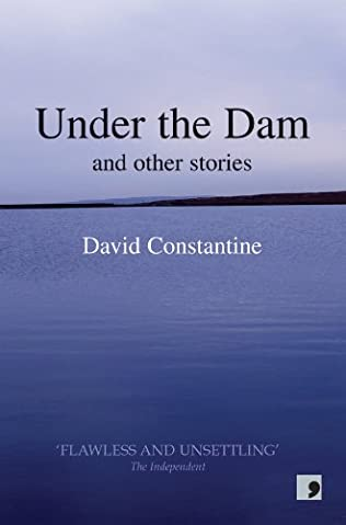 book cover of Under the Dam
