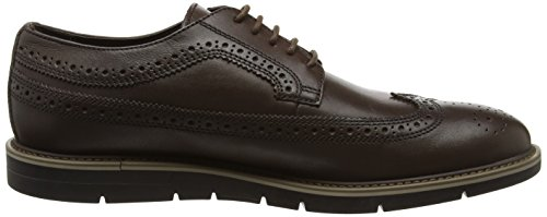 Uvet Geox Marrone U Brogue Ebony Uomo A Zr5Zqzw