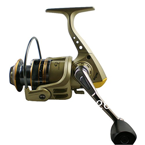 Front Drag Spinning Fishing Reels Dq10F 8+1Bb