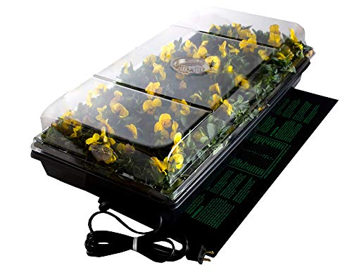 Heated Seed Germination Station from BonsaiOutlet