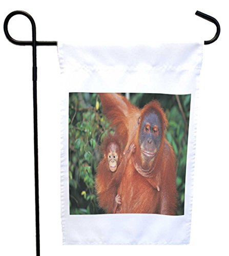 Rikki Knight Orangutan with Baby House or Garden Flag wit...
