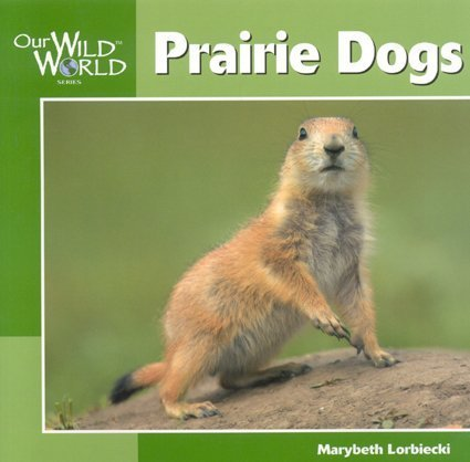 Prairie Dogs (Our Wild World)