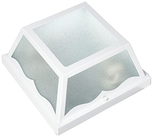 Acclaim 4902WH Builder s Choice Collection 2-Light Ceiling Mount Outdoor Light Fixture, Gloss White
