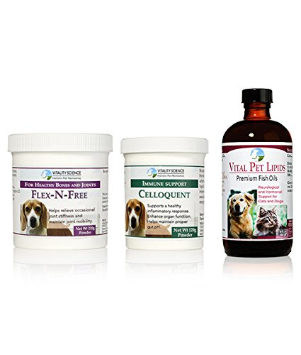 Large Senior Dog Predocol   Comprehensive Care   3 Part Program (Large)