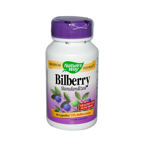 Natures Way - Natures Way Bilberry Standardized - 80 mg - 90 Capsules