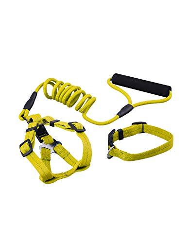 Dog Leash Set for Dog, Leash Set for Dog including Dog Harness , Dog Collar, Dog Training Leash (3 IN 1), for Samll, Medium and Large Dog, Perfect for Daily Training, Walking, Hiking (S Yellow) (Dog Collar Harness Leash Set)