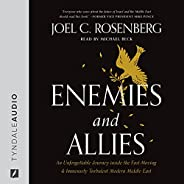 Enemies and Allies: An Unforgettable Journey Inside the Fast-Moving & Immensely Turbulent Modern Middle