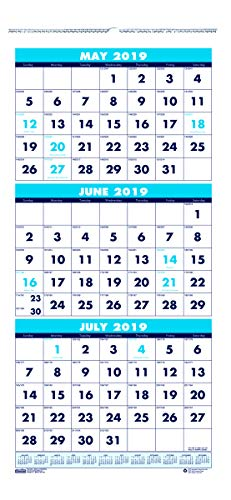 - House of Doolittle 2019-2020 Three-Month Academic Wall Calendar, 8 x 17 Inches, June - July (HOD3645-20)
