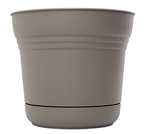 Apollo Caddy - Bloem SP0760 Saturn Planter, 7-Inch, Peppercorn