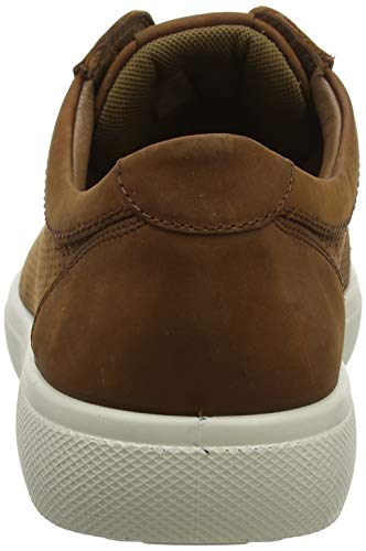 scuro Tobago 307 Hotter uomo marrone scuro da punzonato marrone Sneakers B0HHxqFOw