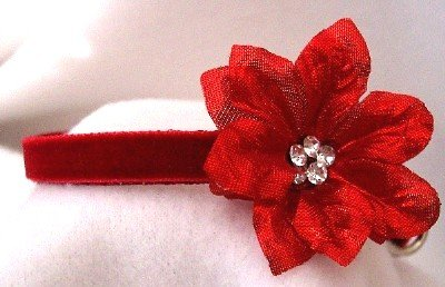 christmas holiday red velvet diamond crystal rhinestone poinsettia dog cat pet collar