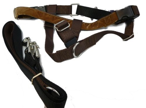 Freedom No Pull Harness and Leash Training Kit Brown X-Large by 2 Hounds