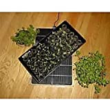 Cozy Products GM-1 GroMat Environmental Control Mat