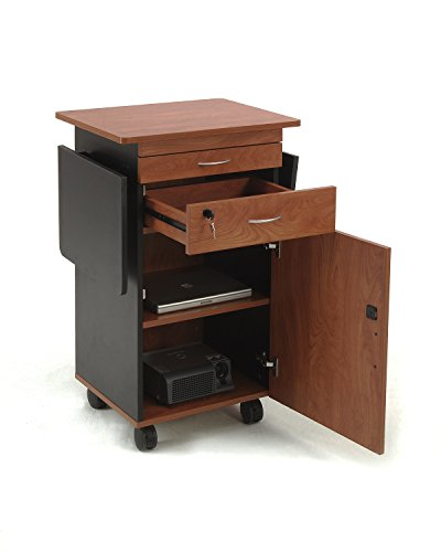 Stationary Media Cabinet - Oklahoma Sound MMC Multi Media Cart, 19