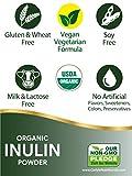 Organic Inulin Powder 30 oz | Twin Pack | Prebiotic Fiber Supplement | from Jerusalem Artichoke | Vegetarian, Non-GMO, Gluten Free | by Carlyle
