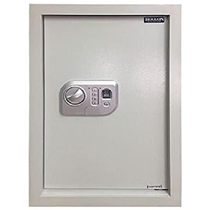 Merveilleux Hollon Safe WS BIO 1 In Wall Safe, White, Small