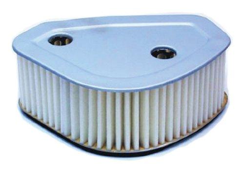 Hiflofiltro HFA4703 Premium OE Replacement Air Filter
