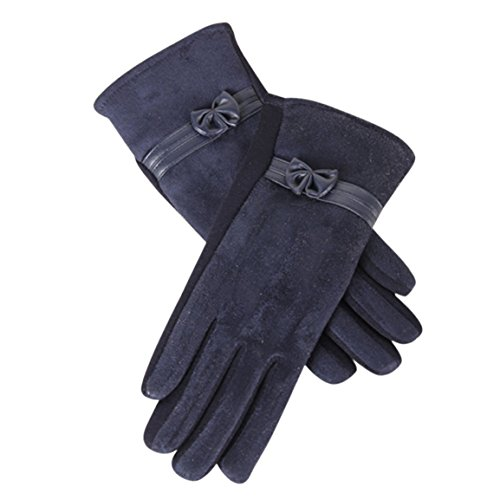 HN 1Pair Winter Warm Screen Riding Drove Gloves for Women (Navy) (Lady In The Navy Gloves)