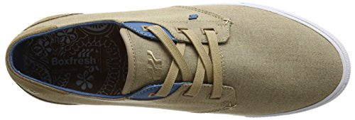 BoxfreshSTERN INC CMBRY/SDE TPE/SPB - Zapatillas hombre Marrón - marrón (Taupe)