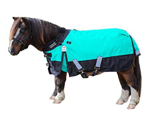 "NEW! Showman TEAL Adjustable 42/""-46/"" 1200 Denier Winter FOAL//MINI Horse Blanket"