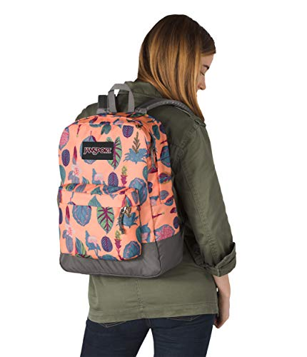 Poliestere Maschi Blue Botanical Borse Sherbert 100 Regal Jansport 1q4Rq