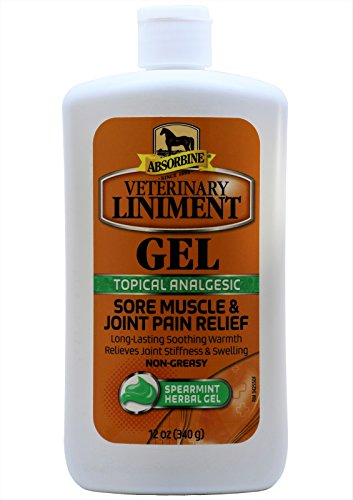 Gel Absorbine (Absorbine Liniment Gel (12 oz))