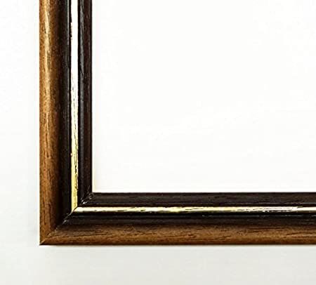 Boston Picture Frame Brown With Gold Edge Empty Frame Without
