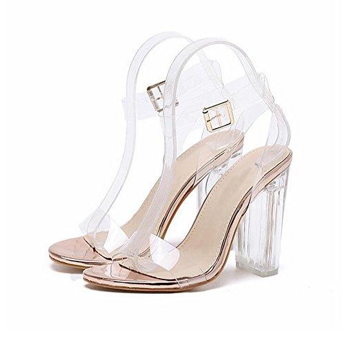 - CARMELA HILL WILLIAMS Open Toed High Heels Women Transparent Heel Sandals Slippers Pumps 11CM Champagne