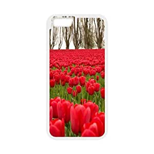 Chaap And High Quality Phone Case For Apple Iphone 6 Plus 5.5 inch screen Cases -Beautiful Holland Tulip Pattern-LiShuangD Store Case 18