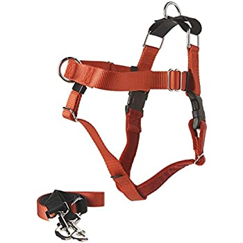 Amazon Com Freedom No Pull Dog Harness Training Package