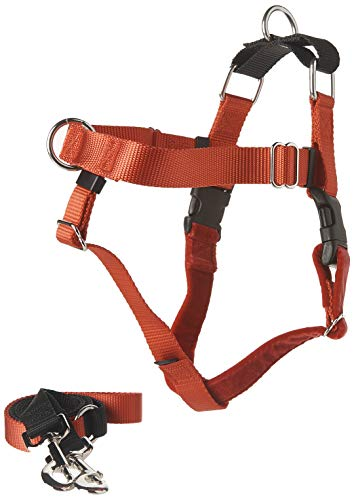 2 Hounds Design Freedom No-Pull Dog Harness with Leash, Medium, 1-Inch Wide, Red (Best Harness For Big Dogs That Pull)