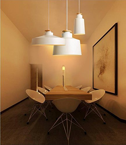 Bs White Ceiling Lighting - WYMBS Creative furniture decoration pendant light Cover iron white chandelier , b