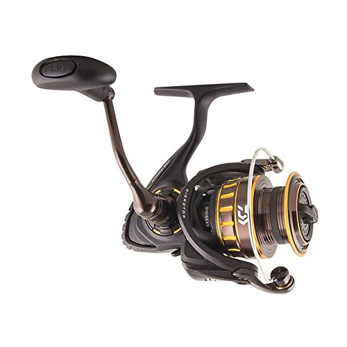 (Daiwa BG Saltwater Medium/Xtra Heavy Spinning Reel, Black/Gold - BG3000)