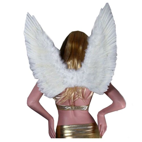 SACAS (Wing Woman Costume)