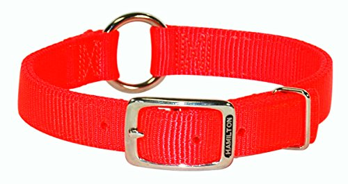 Hamilton 1-Inch Double Thick Safe-Rite Dog Collar with Center Ring, 24-Inch Length, Orange - Hamilton Safety Collar